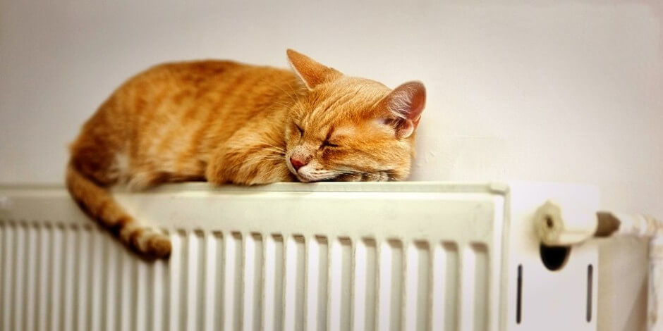 Проблема холода в квартирах ЖК Суворовского
