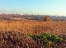 Вид на поля в ЖК Суворовском