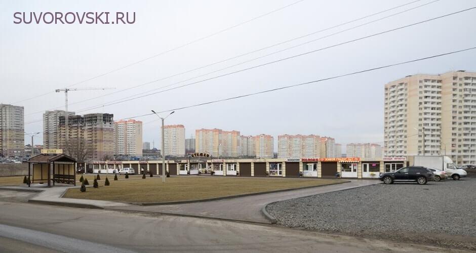 Вид на рынок Атаман ЖК Суворовского