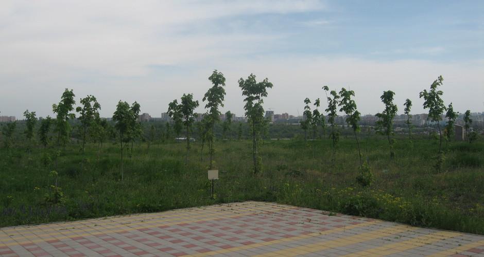Вид на СЖМ из Суворовского