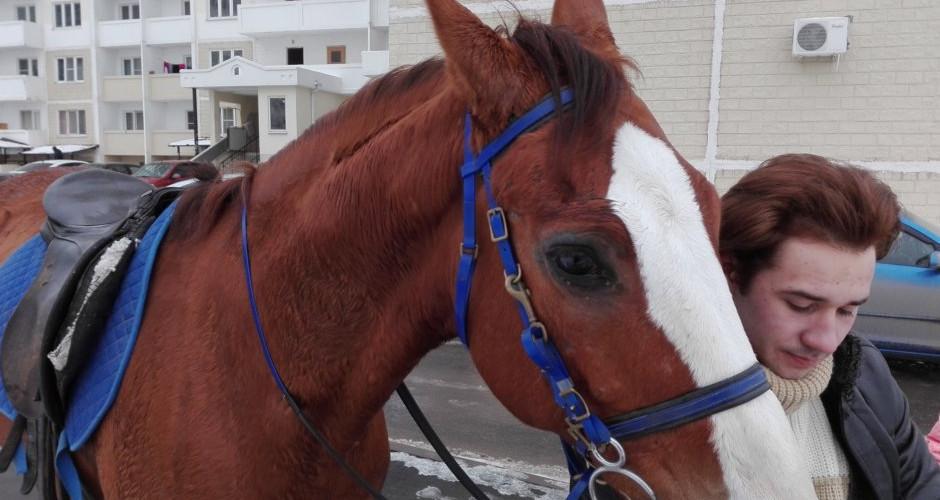 Лошадь с хозяином