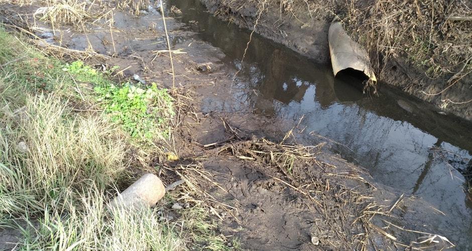 Грязная вода в реке Темерник