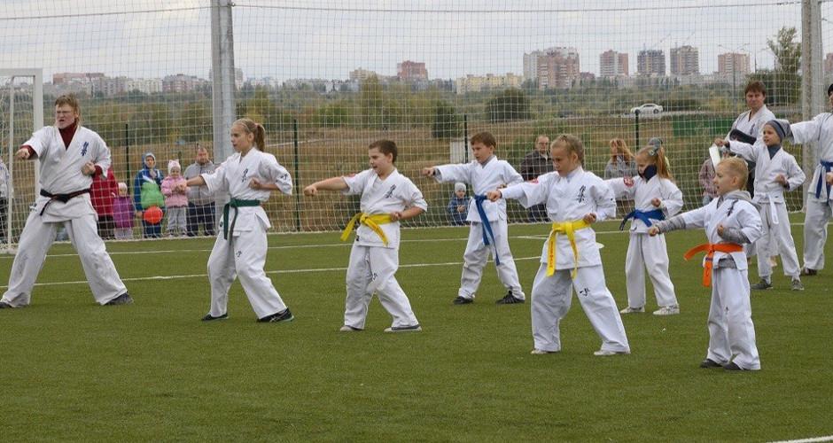 Мастер-класс по каратэ 13 мая 2018 года в ЖК Суворовском
