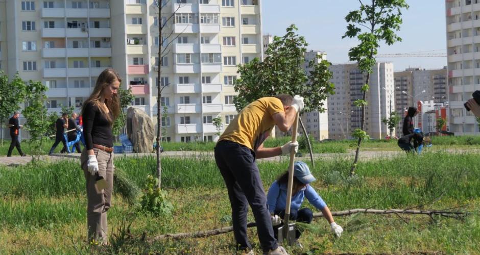 Памятный камень в парке 70-летия Победы в жилом районе «Суворовский». Волонтеры копают землю.