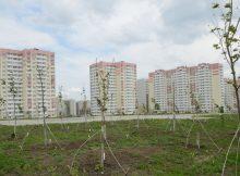 Задача Суворовского - очистить свои прогулочные зоны и дворы
