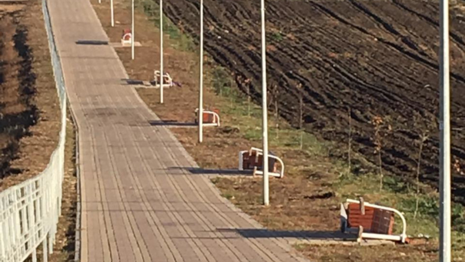 Аллея с поваленными скамейками Суворовского