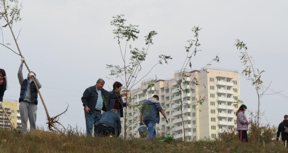 Жители Суворовского сажают деревья на Дне древонасаждения 2018