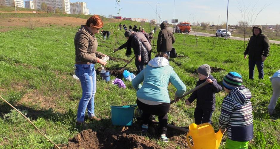 Участники акции Семейное дерево в ЖК Суворовский за работой!