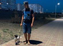 Спасенная собачка в ЖК Суворовский. Фото 1.