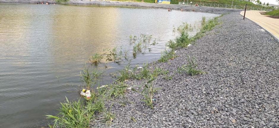 Загрязнение водоемов в ЖК Суворовский. Фото 3.