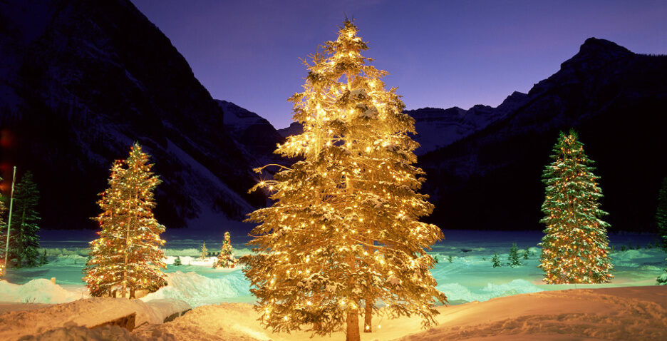 Приглашаем на новогоднюю елку жителей Сувороского